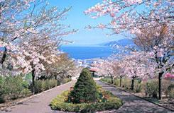 小樽手宮公園