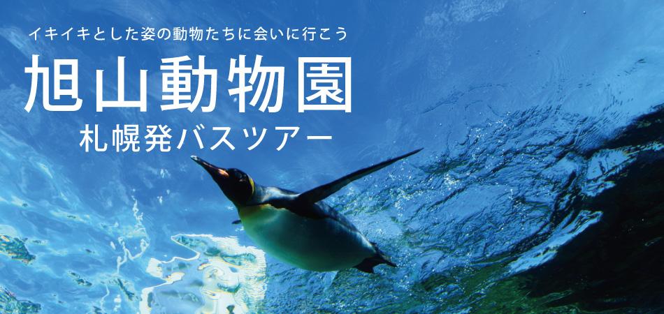 札幌発旭山動物園号日帰りバスツアー